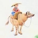 骑着牛儿来约会